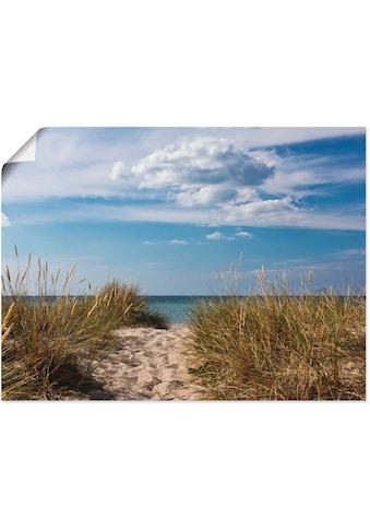 Artland Wandbild »Ostseestrand in Dänemark«, Strand, (1 St.), in vielen Größen &... kaufen