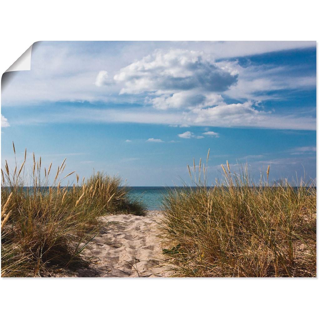 Artland Wandbild »Ostseestrand in Dänemark«, Strand, (1 St.), in vielen Größen & Produktarten - Alubild / Outdoorbild für den Außenbereich, Leinwandbild, Poster, Wandaufkleber / Wandtattoo auch für Badezimmer geeignet