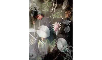 Komar Fototapete »Vliestapete Night Flowers«, bedruckt-geblümt-floral-realistisch, 200... kaufen