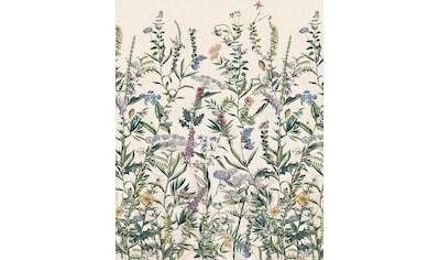 Komar Fototapete »Flowering Herbs«, bedruckt-floral-tropisch kaufen