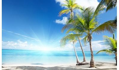 Consalnet Fototapete »Sonniger Strand mit Palme«, Strand kaufen
