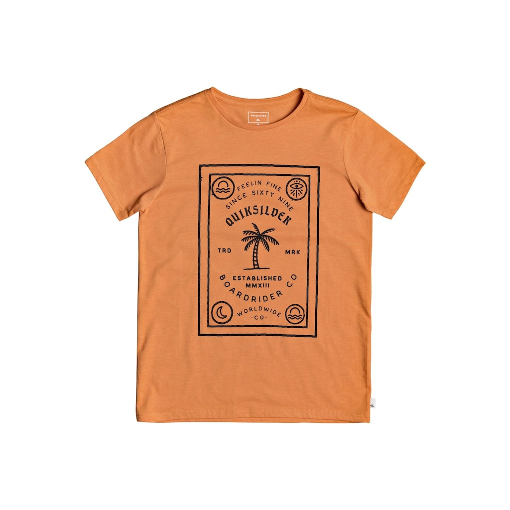 Quiksilver T-Shirt »Bad Liar«