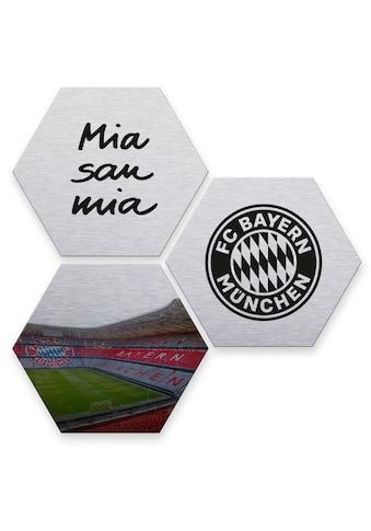 Wall-Art Mehrteilige Bilder »Silber FC Bayern München«, (Set, 3 St.) kaufen
