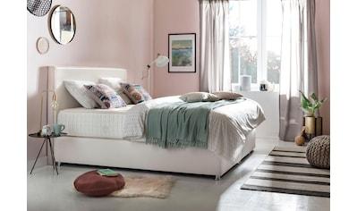 grüne betten Boxspringbett »Amelia«, mit 7-Zonen-Tonnentaschenfederkern-Matratze und... kaufen