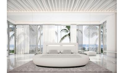 SalesFever Rundbett, mit LED-Beleuchtung im Kopfteil, Design Bett in Kunstleder, Lounge Bett mit stimmungsvollem Licht, Rundbett kaufen