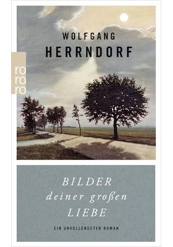 Buch »Bilder deiner großen Liebe / Wolfgang Herrndorf, Marcus Gärtner, Kathrin Passig« kaufen