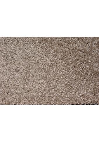 Andiamo Teppichboden »Modena«, rechteckig, 16 mm Höhe, Breite 500 cm kaufen