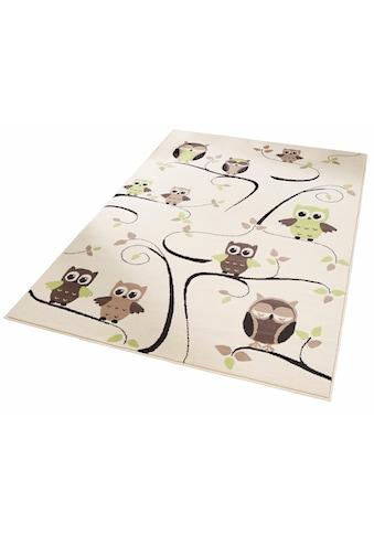 Zala Living Kinderteppich »Eulen«, rechteckig, 9 mm Höhe, Modernes Eulen Design, Kurzflor kaufen
