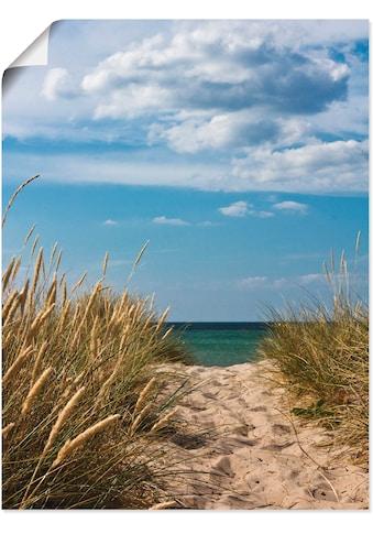 Artland Wandbild »Strandzugang an der Ostsee - Dänemark 9«, Strand, (1 St.), in vielen... kaufen