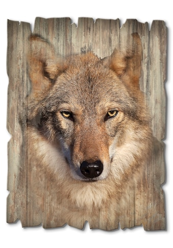 Artland Holzbild »Wolf« kaufen