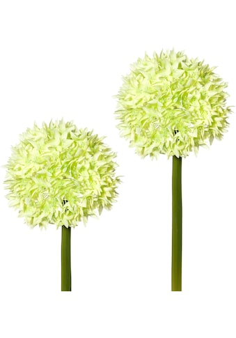 Creativ green Kunstblume, 2er Set kaufen