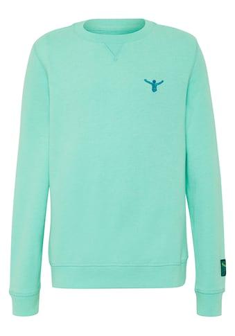 Chiemsee Sweatshirt »Sweatshirt für Kinder« kaufen