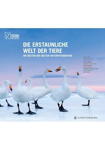 Buch »Die erstaunliche Welt der Tiere / Natural History Museum, Birgit van der Avoort« kaufen
