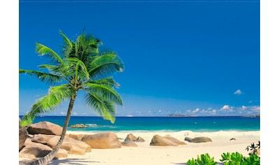 Komar Fototapete »Seychellen«, bedruckt-Meer-Strand, ausgezeichnet lichtbeständig kaufen
