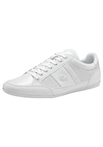 Lacoste Sneaker »CHAYMON 120 3 CMA« kaufen