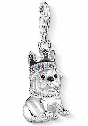 THOMAS SABO Charm-Einhänger »Bulldogge mit Krone, 1510-497-21«, mit Emaille, Glas-Keramik Steinen, synth. Korund und synth. Spinell kaufen