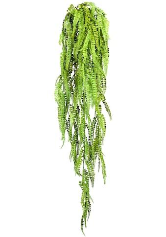 Creativ green Kunstranke »Adianthumhänger« (1 Stück) kaufen