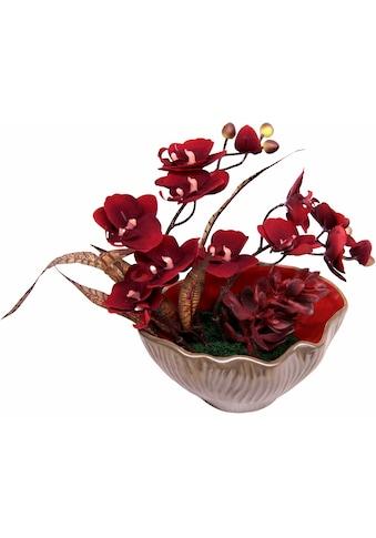 I.GE.A. Kunstpflanze »Gesteck aus Orchidee« (1 Stück) kaufen