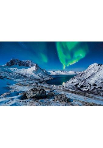 Komar Vliestapete »I LOVE Norway«, naturalistisch kaufen