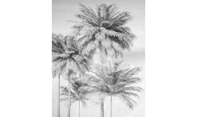 Komar Fototapete »Cocco«, bedruckt-floral-tropisch kaufen