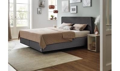 JETTE Betten Boxspringbett »Basis #101 Straight«, 180 cm kaufen