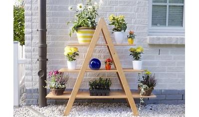 promadino Blumenständer »Blummentreppe MAXI«, BxTxH: 120x31x137 cm kaufen