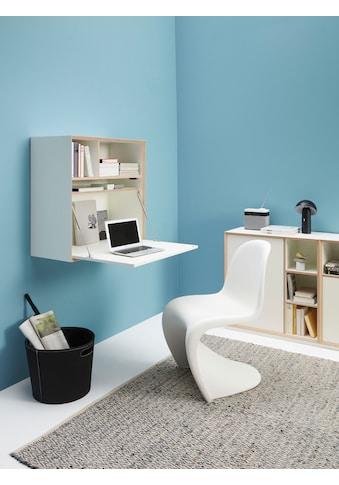 Müller SMALL LIVING Regalelement »VERTIKO PLY FIVE HOME OFFICE«, Ausgezeichnet mit dem... kaufen
