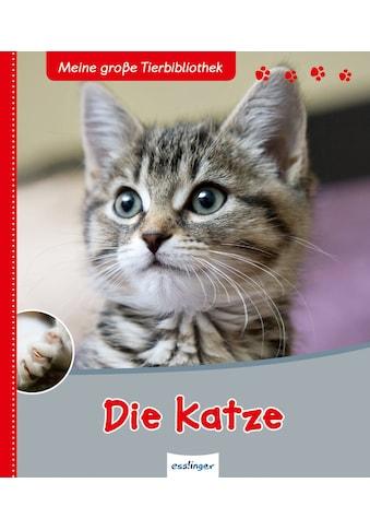 Buch »Meine große Tierbibliothek: Die Katze / Stéphane Frattini« kaufen