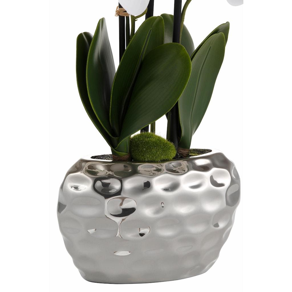 Creativ green Kunstpflanze »Orchidee«