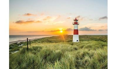 Consalnet Fototapete »Leuchtturm«, verschiedene Motivgrößen, für das Büro oder Wohnzimmer kaufen