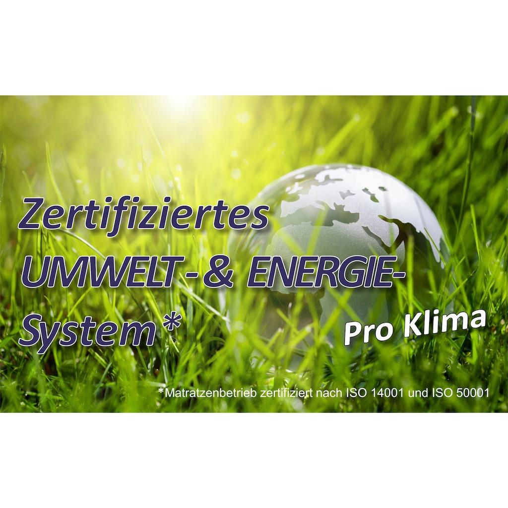 Beco Lattenrost »Dura Flex LR-K«, 7 Zonen, 2-tlg. ideal für Doppelbetten
