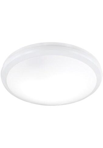 TRIO Leuchten LED Deckenleuchte »AVIOR«, E27, LED Deckenlampe kaufen