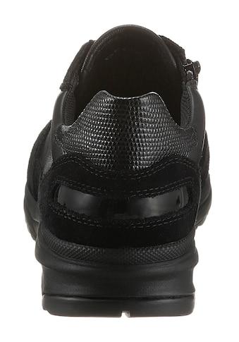Geox Sneaker »Airell«, mit Innenreißverschluss kaufen