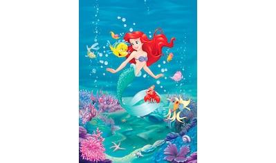 Komar Fototapete »Ariel Singing«, bedruckt-Comic, ausgezeichnet lichtbeständig kaufen