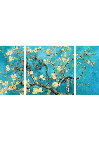 Home affaire Wandbild »Mandorlo in fiore«, (Set), 3-tlg. Set kaufen