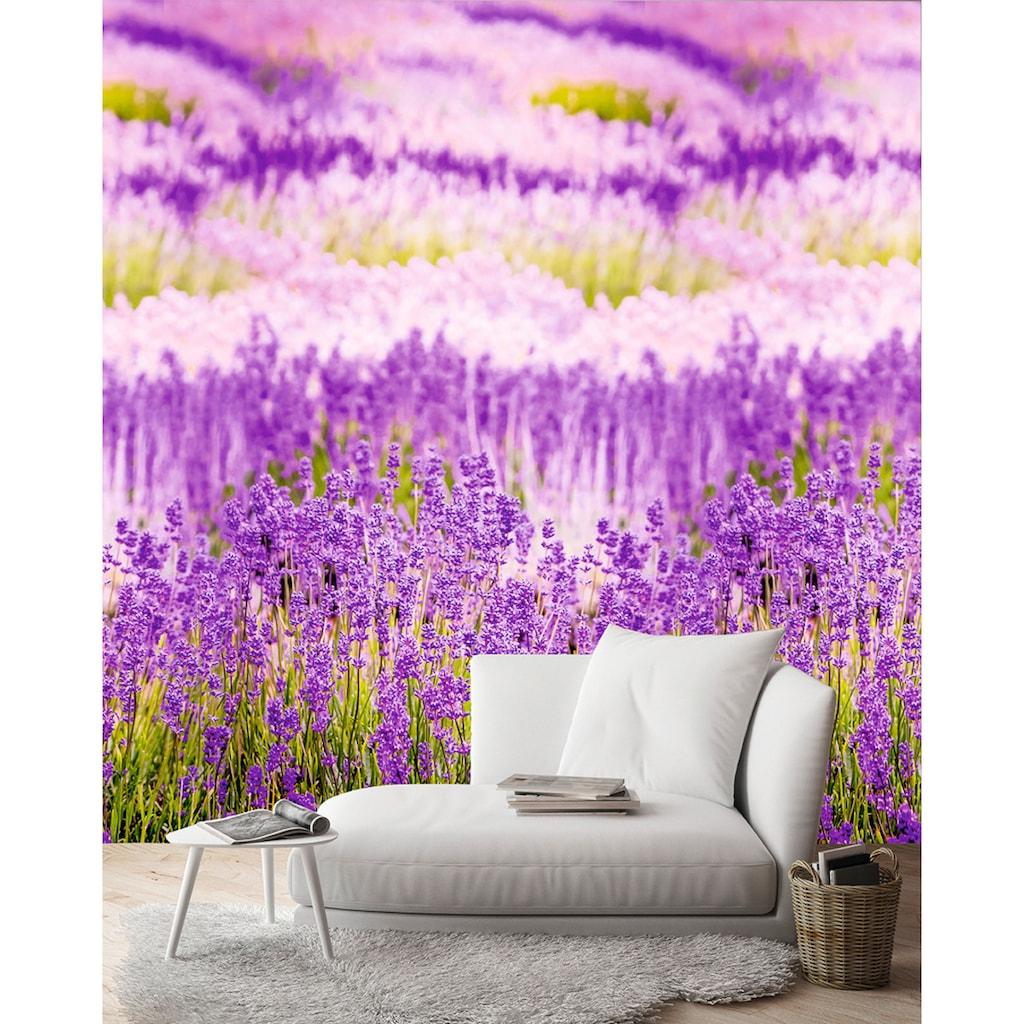 Andiamo Vliestapete »Lavendelblüten«, 1 Rolle á 3 Bahnen 159 cm x 280 cm