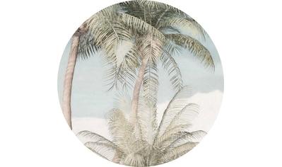 Komar Vliestapete »Hush«, abstrakt-botanisch kaufen