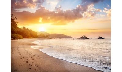 Papermoon Fototapete »Karnataka Beach« kaufen