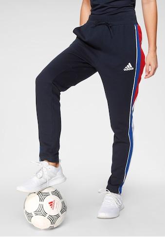 adidas Performance Jogginghose »W AAC Pnt« kaufen