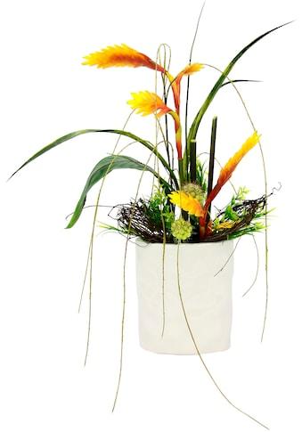 I.GE.A. Kunstpflanze »Anthurie« kaufen