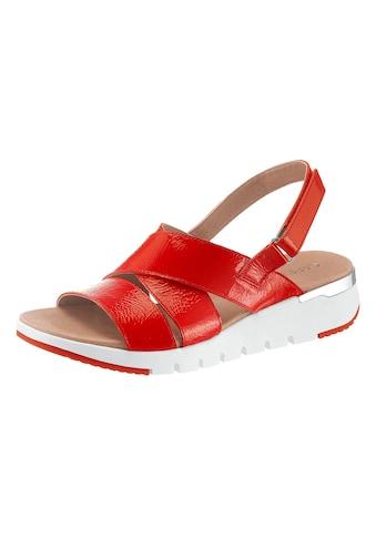 Caprice Sandale kaufen