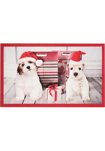 HANSE Home Fußmatte »Christmas Dogs«, rechteckig, 7 mm Höhe, Fussabstreifer, Fussabtreter, Schmutzfangläufer, Schmutzfangmatte, Schmutzfangteppich, Schmutzmatte, Türmatte, Türvorleger, In- und Outdoor geeignet kaufen