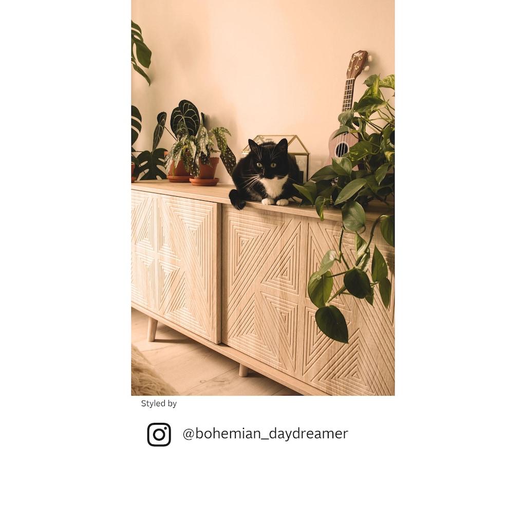 COUCH♥ Sideboard »Schwalm«, mit 2 Schiebetüren, 155 cm breit, COUCH Lieblingsstücke