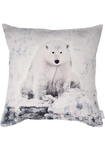 Linne Kissenhülle »Eisbär« kaufen