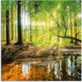 Artland Glasbild »Wald mit Bach«, Wald, (1 St.)