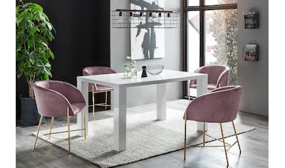 SalesFever Essgruppe, (Set, 5 tlg.), bestehend aus 4 modernen Polsterstühlen und einem 160 cm breiten Tisch kaufen