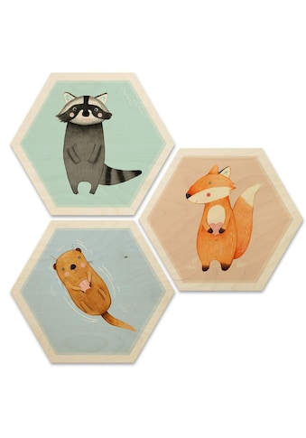 Wall-Art Mehrteilige Bilder »Hexagon Collage Die wilden Drei«, (Set, 3 St.) kaufen