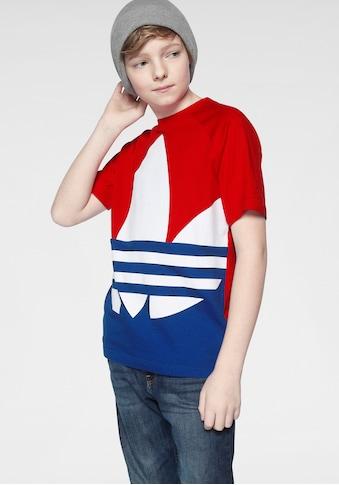 adidas Originals T - Shirt »BIG TREFOIL TEE« kaufen