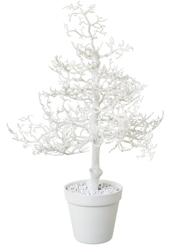 Kunstbaum »Hainbuche«, mit Glitter kaufen