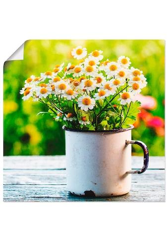 Artland Wandbild »Frühlingsgarten mit Gänseblümchen«, Blumen, (1 St.), in vielen... kaufen